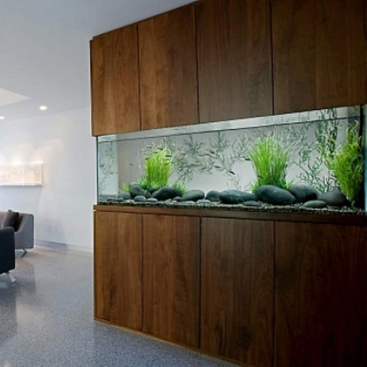 2013-Amazing-aquarium-design