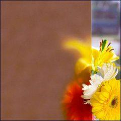 стекло сатинированное 10 мм
